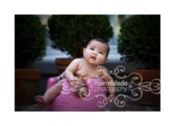 Baby Boxwood