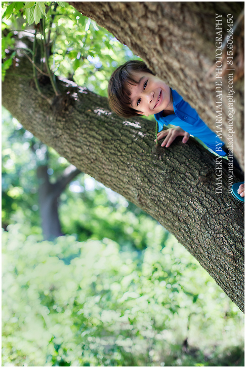 Photo of a boy peeking out from a tree branch in Chicago