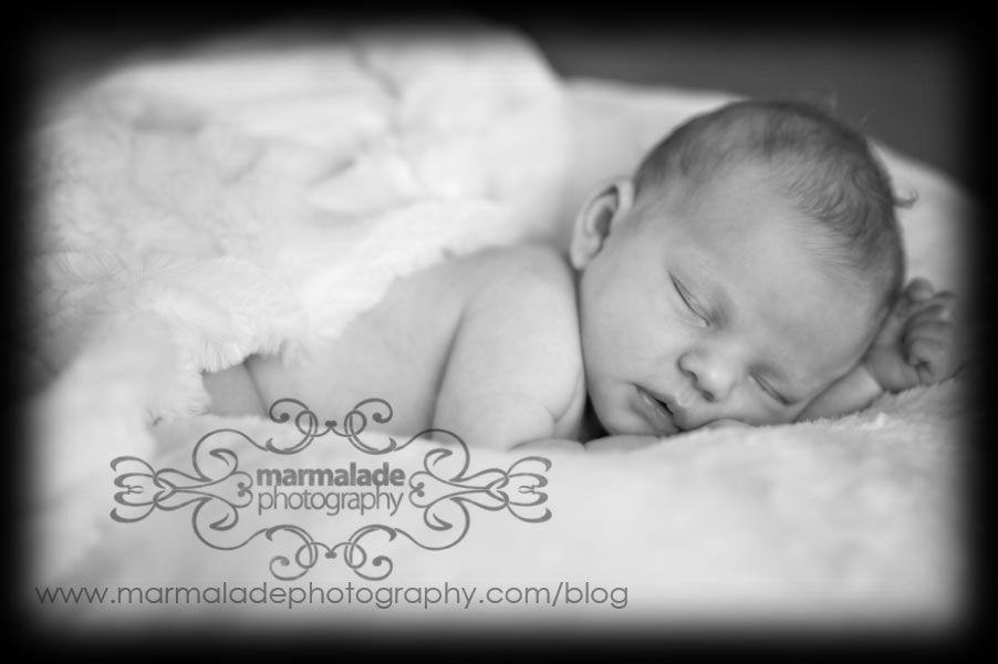 Chicago Newborn Photography